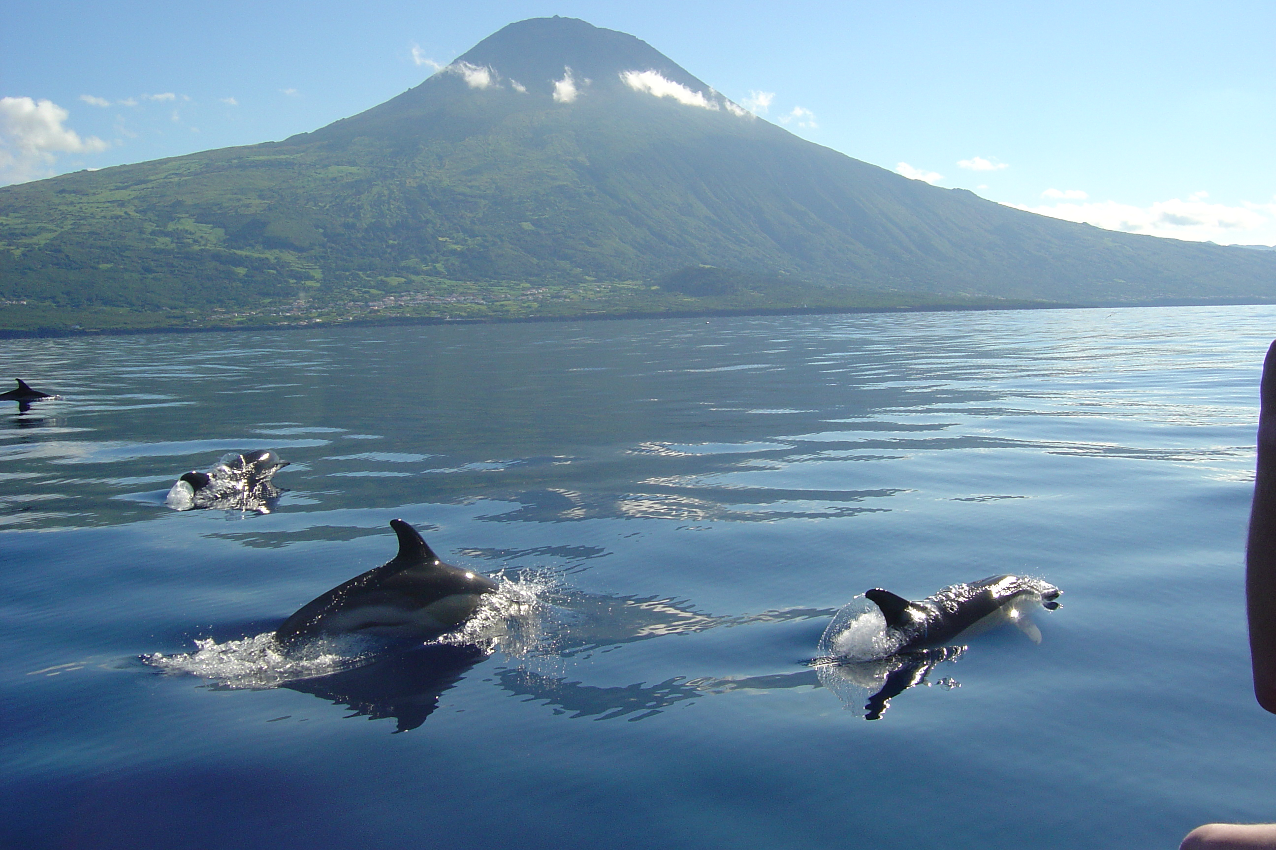 Azore_Photo by Norberto Diver - Azores Turismo