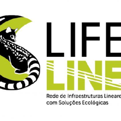 IENE International Conference